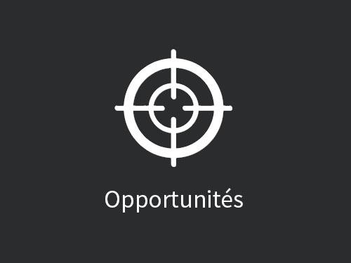 portfolio_opportunites